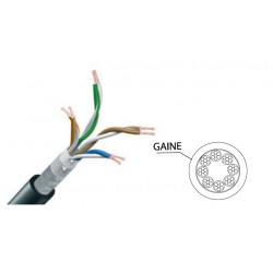 CÂBLE ETHERNET CAT5E